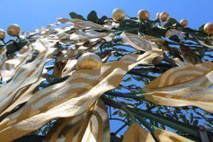 Detail der Secessionskuppel, Foto: Alexandra Matzner.
