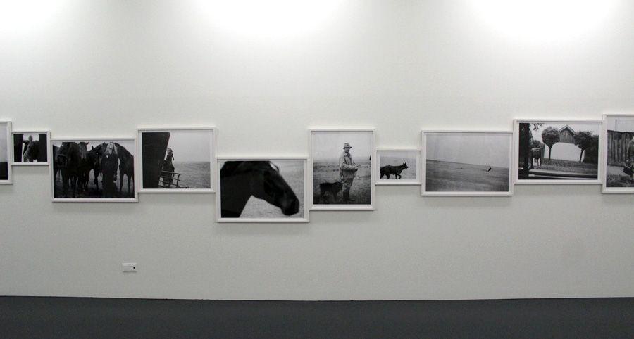 Elfie Semotan, Puszta-Serie, 1990, Ausstellungsansicht Kunsthalle Krems, Foto: Alexandra Matzner.