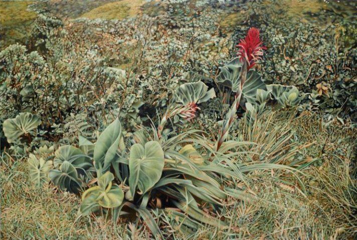 Franz Gertsch , Bromelia (Guadeloupe), 2012, Eitempera auf ungrundierter Baumwolle, 250 x 370 cm, Besitz des Künstlers © Franz Gertsch, 2013, Foto: Dominique Uldry, Bern.