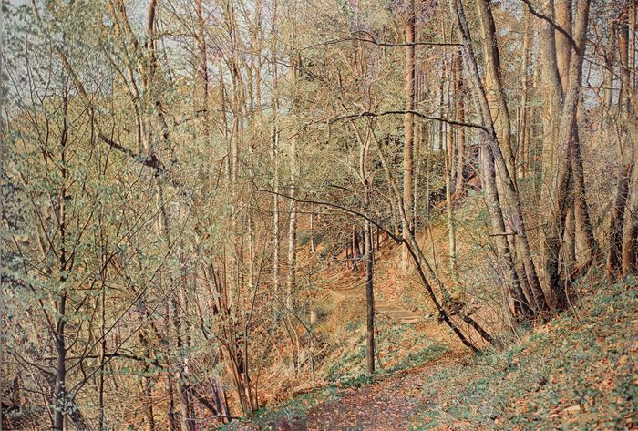 Franz Gertsch, Frühling, 2009-2011, Eitempera auf ungrundierter Baumwolle, 325 x 480 cm, Besitz des Künstlers © Franz Gertsch, 2013, Foto: Dominique Uldry, Bern.