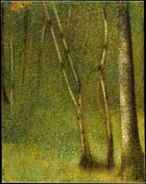 Georges Seurat, Wald bei Pontaubert, 1881, Öl auf Leinwand, 79.1 x 62.5 cm (Metropolitan Museum of Art, New York, Purchase, Gift of Raymonde Paul, in memory of her brother, C. Michael Paul, by exchange, 1985, Inv.-Nr. 1985.237)