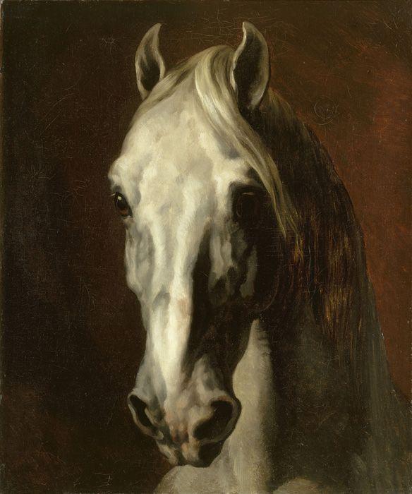 Thédore Géricault, Tête de cheval blanc, 1816–1817, Öl auf Leinwand, 65 cm x 54 cm (gerahmt 94 cm x 82 cm) Musée du Louvre, Paris bpk | RMN - Grand Palais | Thierry Le Mage.