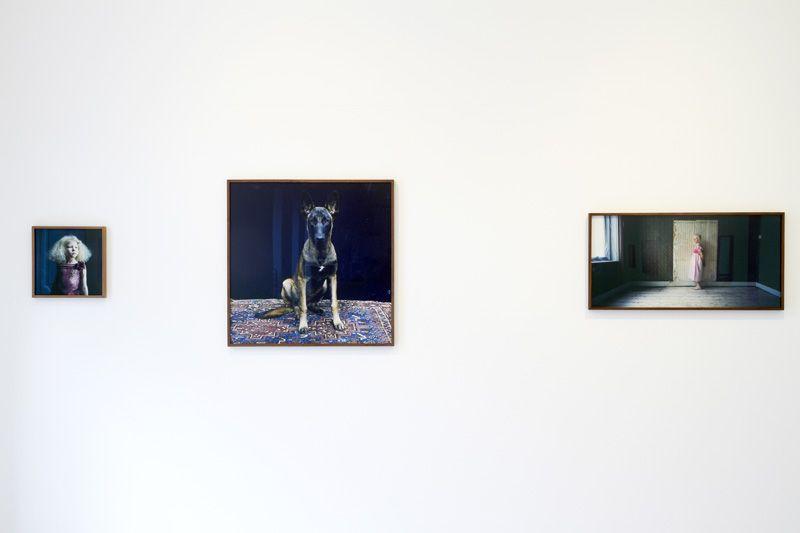 """Installationsansicht """"Hellen van Meene. Portraits"""" (mit Untitled, St. Petersburg, 2008) in der Galerie OstLicht, 13.4.-9.6.2013, Wien, Fotos: Michael Kollmann / Galerie OstLicht."""