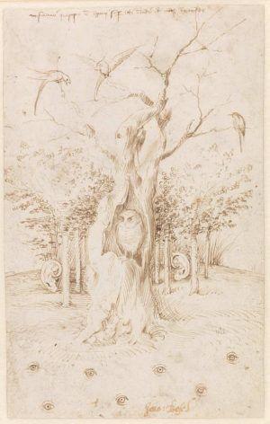 Hieronymus Bosch, Das Feld hat Augen und der Wald hat Ohren / Studie eines Bettlers und Werkstattskizzen, Feder und braune Tusche und schwarze Kreide auf Papier, 20,5 x 13/12,7 cm (SMPK, Kupferstichkabinett, Berlin, Inv.-Nr. KdZ 549)