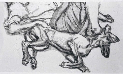 Lucian Freud, Pluto, 1988, Radierung, 41,9 x 118,7 cm, UBS Art Collection ©The Lucian Freud Archive / Bridgeman Images.