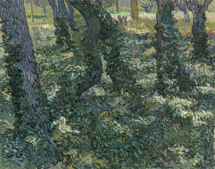 Vincent van Gogh, Unterholz, Saint-Rémy-de-Provence Juli 1889, Öl auf Leinwand, 73 × 92,3 cm (Van Gogh Museum, Amsterdam / Vincent van Gogh Foundation)