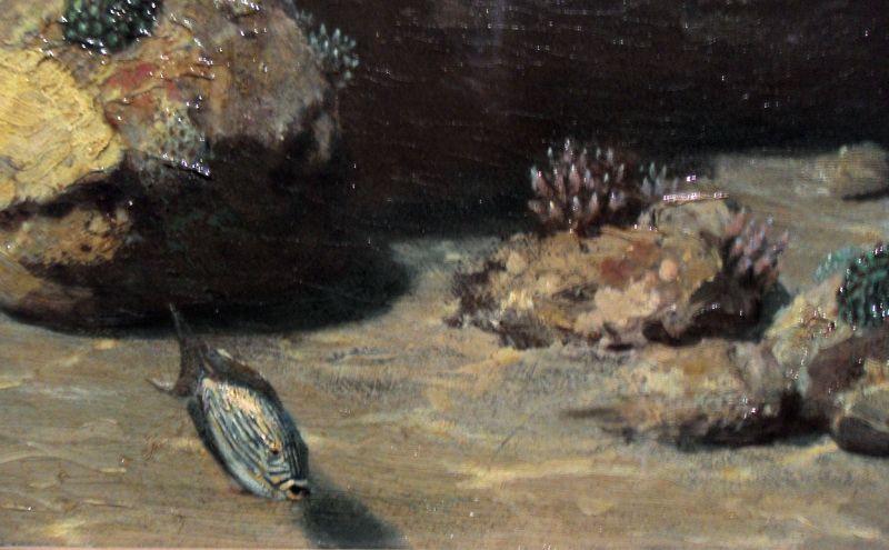 Eugen von Ransonnet-Villez, Unterseeische Landschaft, Detail 3, um 1864-65 (Wien, Naturhistorisches Museum), Foto: Alexandra Matzner.