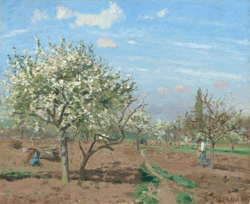 Camille Pissarro, Blühende Obstbäume, Louveciennes 1872, Öl auf Leinwand, 45,1 x 54,9 cm (National Gallery of Art, Washington, Ailsa Mellon Bruce Collection 1970.17.51)