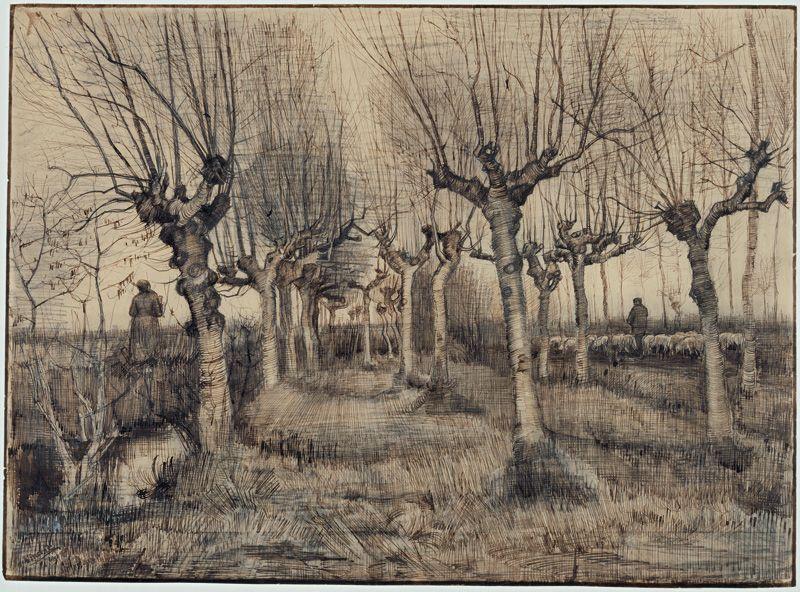 Vincent van Gogh, Gekröpfte Birken, 1884, Bleistift, Feder in Braun, Deckweißhöhungen © Van Gogh Museum, Amsterdam (Vincent van Gogh Foundation).