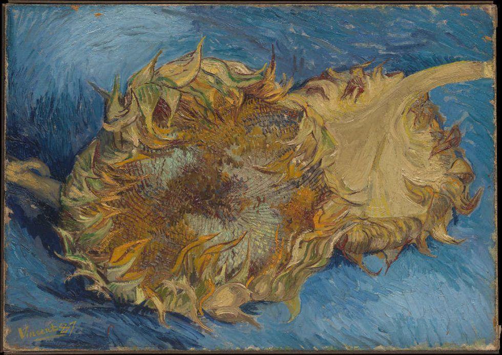 Vincent van Gogh, Zwei Sonnenblumen, Sommer 1887, Öl auf Leinwand, 43,2 x 61 cm (The Metropolitan Museum of Art, New York, Rogers Fund)