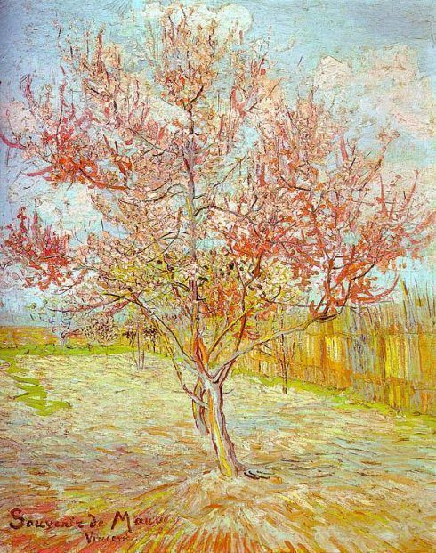 Vincent van Gogh, Blühender Pfirsichbaum (Erinnerung an Mauve), März 1888, Öl auf Leinwand, 73 x 59,5 cm (Kröller-Müller Museum, Otterlo)