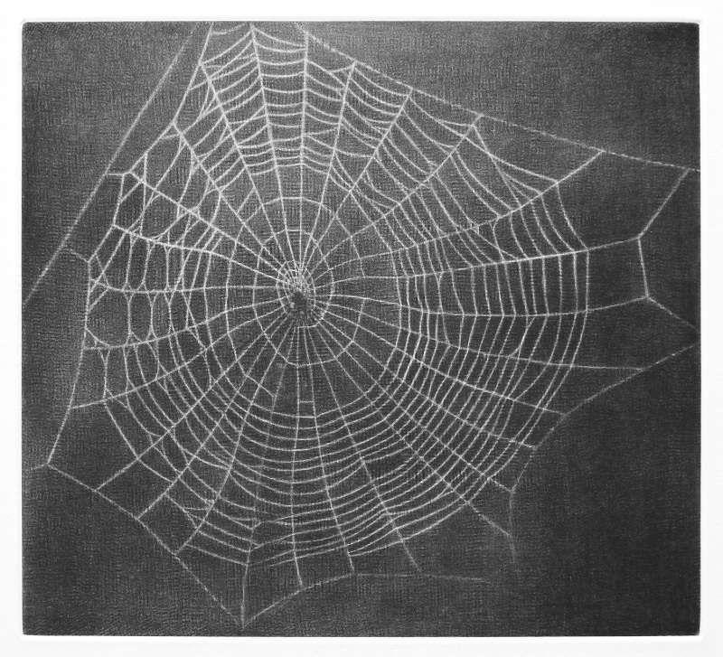Vija Celmins, Untitled (Web 1), 2001, Mezzotinto, Motiv: 17,8 x 19,7 cm Blatt: 45,7 x 37,5 cm Gedruckt von Jacob Samuel Verlegt von Lapiss Press, Los Angeles.