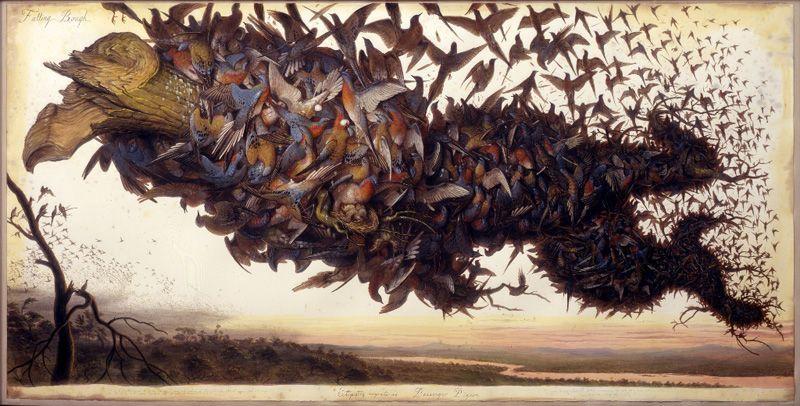 Walton Ford, Falling Bough, 2002, Aquarell, Gouache, Tinte und Bleistift auf Papier © Walton Ford, Courtesy Paul Kasmin Gallery.