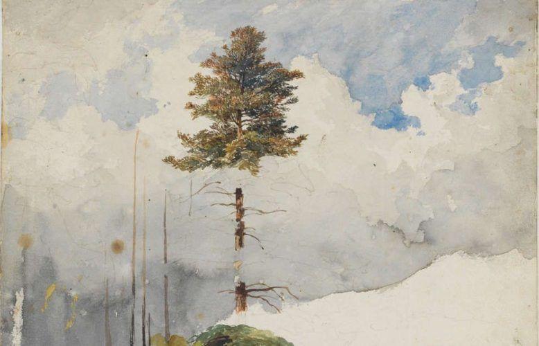 Heinrich Reinhold, Baum- und Wolkenstudie, Detail, um 1820, Aquarell (Ausschnitt) (© Klassik Stiftung Weimar, Graphische Sammlungen)
