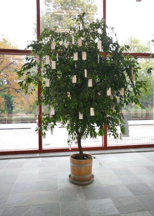Yoko Ono, Wish Trees, 1996/2017, Partizipationswerk, Anweisung der KIünstlerin, Bäume, weiße Etiketten mit Faden Stifte und Schreibpult, Ausstellungsansicht 21er Haus, 2017 (© Yoko Ono), Foto: Alexandra Matzner, ARTinWORDS.